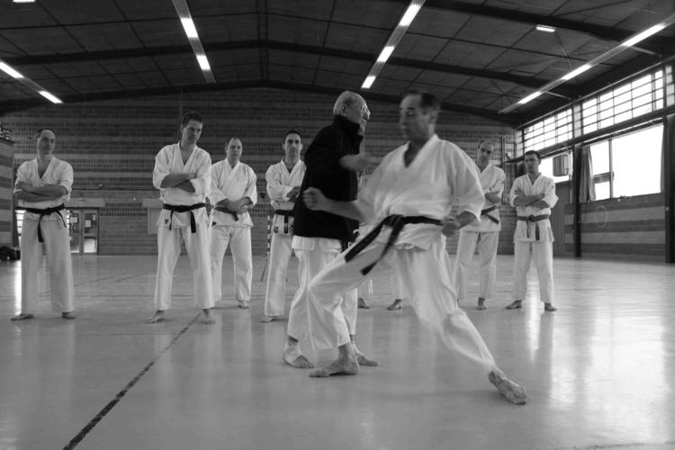 Harada senseï contre une ceinture noire kds
